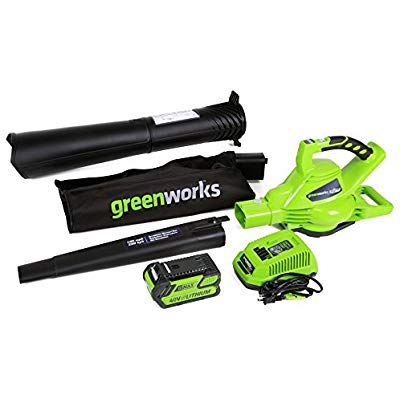 Buy Greenworks 40V 185 MPH Variable Speed Cordless Blower